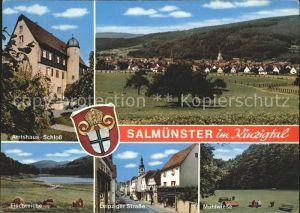 Salmuenster Bad Soden Amtshaus Schloss Fischteiche Leipziger Strasse Muehlwiese  Kat. Bad Soden am Taunus