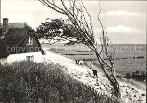 Ahrenshoop Ostseebad Duenenhaus Strand Ostseebad / Ahrenshoop /Nordvorpommern LKR