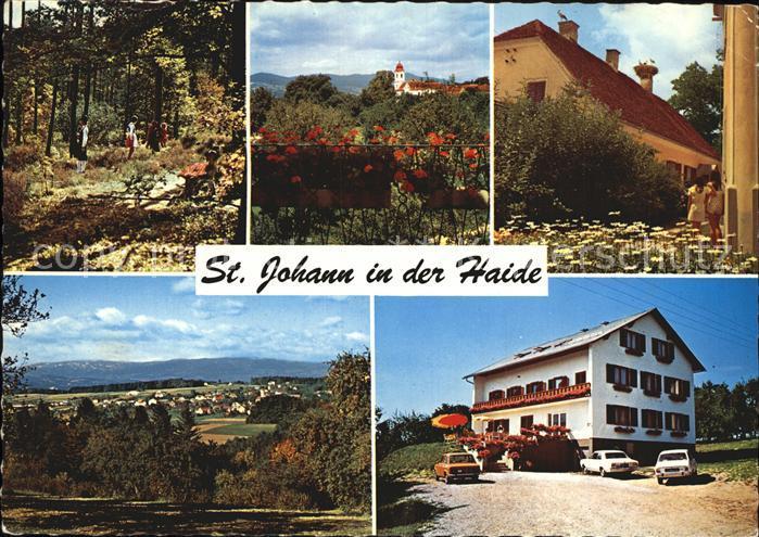 St Johann Haide Waldpartie Kirche Pfarrhof mit Stoerchen Gesamtansicht Hacklhof Kat. St Johann in der Haide Steiermark