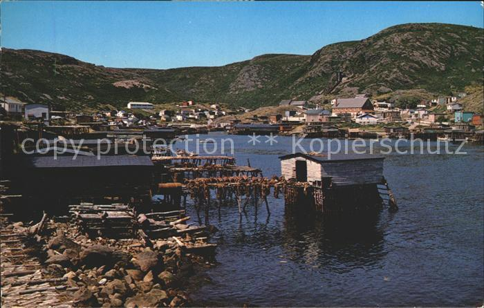 Petty Harbour Fish nets and their catch dry in the sun Kat. Petty Harbour Maddox Cove