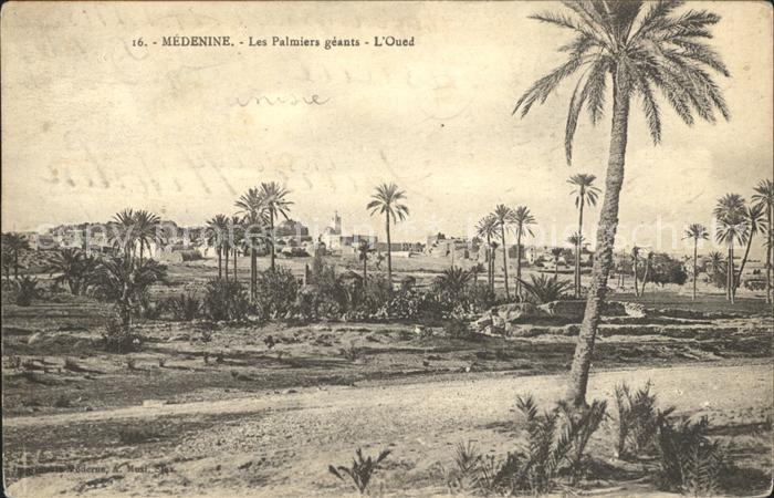 Medenine Djeffera Les Palmiers geants l Oued Kat. Tunesien