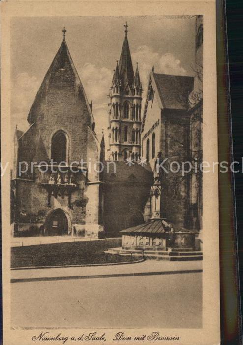 Naumburg Saale Dom mit Brunnen Kat. Naumburg