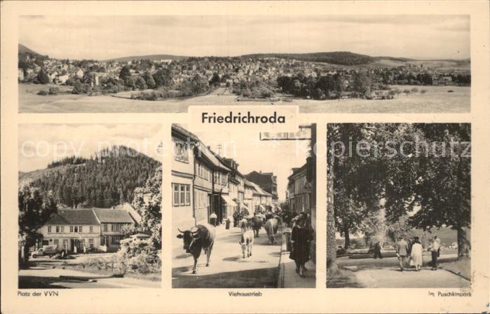 Friedrichroda Platz der VN Viehaustrieb Puschkinpark Kat. Friedrichroda