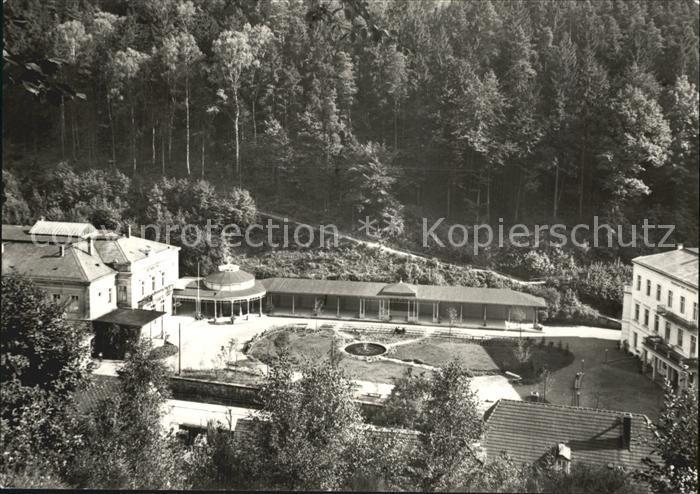 Bad Schandau Kurhaus mit Brunnen Kat. Bad Schandau