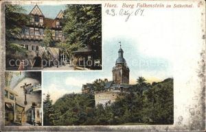 Harz Burg Falkenstein Selketal Kat.