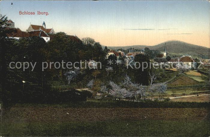 Bad Iburg Ortsansicht mit Schloss Kat. Bad Iburg