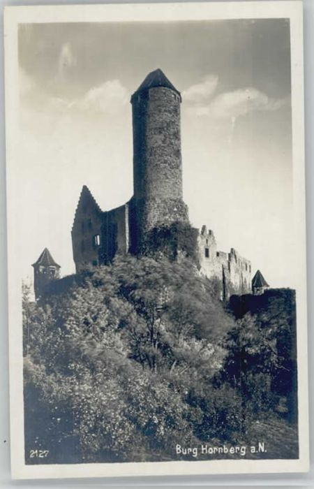 Neckarzimmern Burg Hornberg / Neckarzimmern /Neckar-Odenwald-Kreis LKR