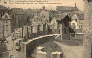 Gent Gand Flandre Gent Gand Gravensteen Chateau Comtes * /  /