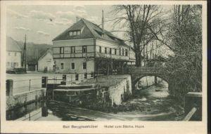 Bad Berggiesshuebel Bad Berggiesshuebel Hotel zum saechsischen Haus * / Berggiesshuebel Bad Gottleuba /Saechsische Schweiz-Osterzgebirge LKR