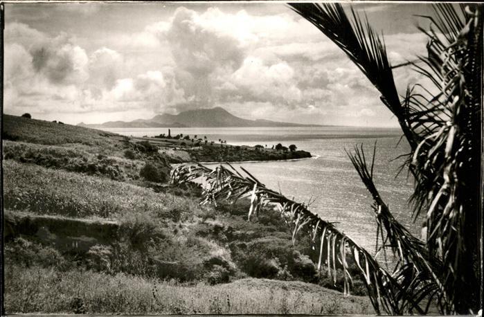 Saint Kitts Nevis Palmetto Point / Basseterre /