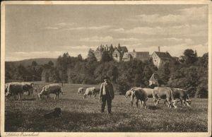 Lauterbach Hessen Schloss Eisenbach Kuehe / Lauterbach (Hessen) /Vogelsbergkreis LKR