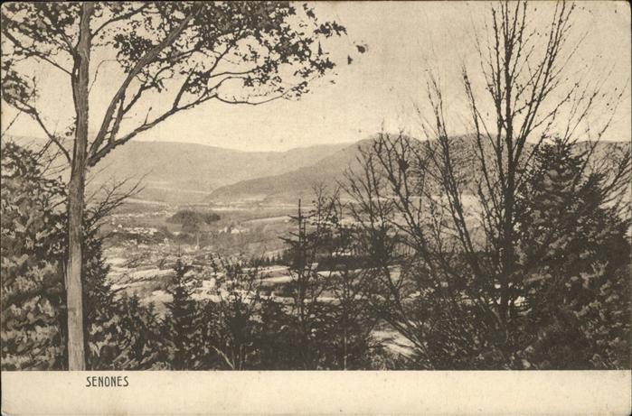 Senones Vosges Panorama / Senones /Arrond. de Saint-Die
