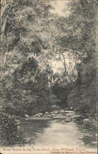 King Williams Town River Scene in the Perie Bush