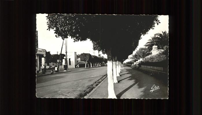 Tipasa Rue Principale