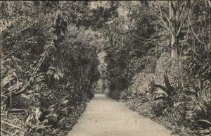 Ceylon = Sri Lanka Park Kat.