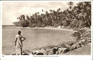Kandy Sri Lanka Palm fringed coast / Kandy /