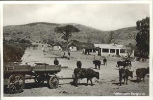 Transvaal Suedafrika Ferienheim Bergheim Ochsenkarren
