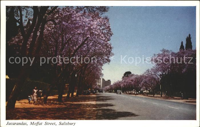 Salisbury Rhodesia Jacarandas Moffat Street Kat. Simbabwe