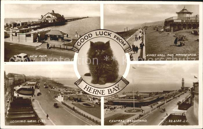 Herne Bay Pier Kings Hall Promenade Central Bandstand Cat Valentine's Post Card / City of Canterbury /