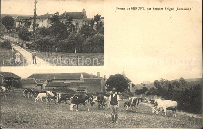 Solgne Ferme de Berupt Vaches / Solgne /Arrond. de Metz-Campagne