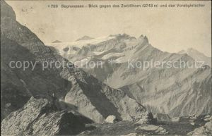 Segnes Disentis GR Segnespass mit Zwoelfihorn und Vorabgletscer / Disentis /Bz. Surselva