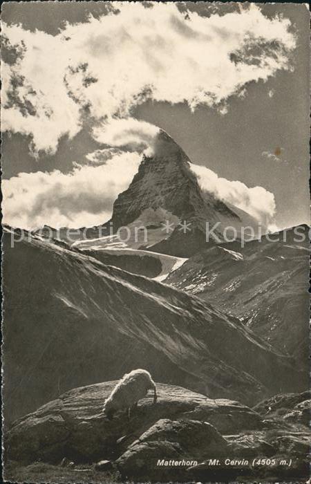 Matterhorn VS Mt. Cervin Kat. Matterhorn