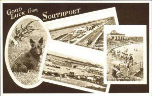 Southport UK Promenade Floral Hall Bridge Lake Bathing Pool Dog Valentine's Post Card / Liverpool /Liverpool