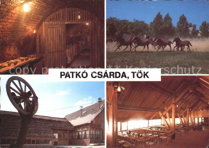 Ungarn Patko Csarda Toek Pferde Kat. Ungarn