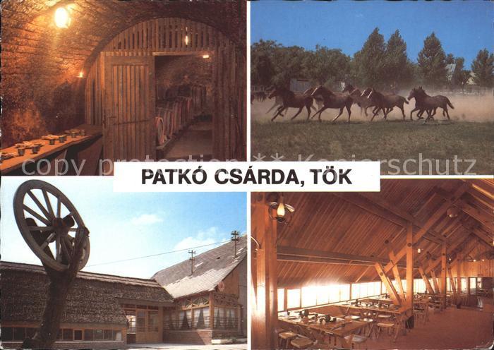 Ungarn Patko Csarda Restaurant Toek Pferde Kat. Ungarn