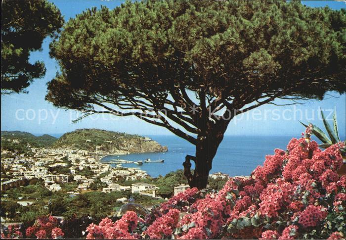 Ischia Isola Lacco Ameno Blick Villa Parodi Kat.
