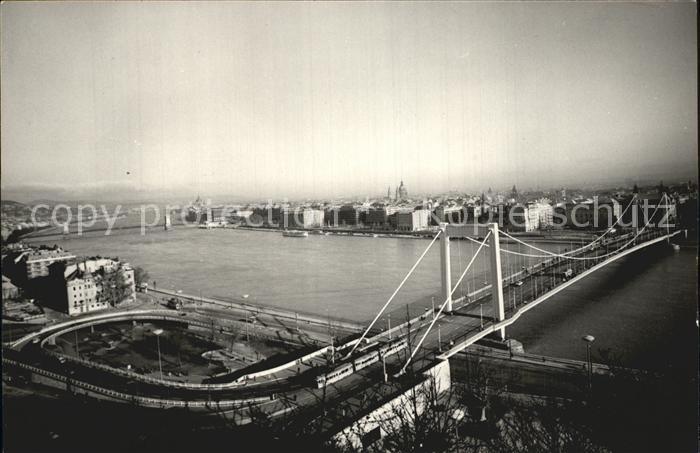 Budapest Erzsebet hid Elisabethbruecke Donau Kat. Budapest