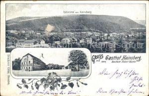 Hainsberg Sachsen Panorama Gasthof Hainsberg  Kat. Freital