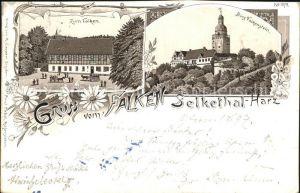Falkenstein Harz Burg Gasthaus zum Falken Selkethal Kat. Falkenstein Harz