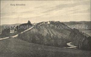 Birkenfeld Nahe Panorama Burg Kat. Birkenfeld