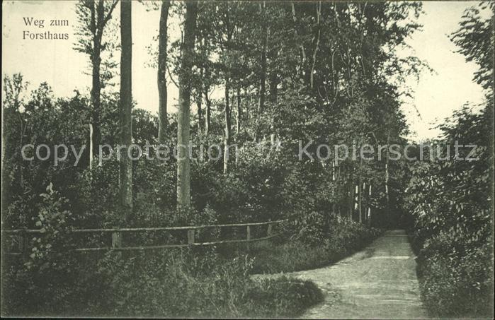 Bad Rothenfelde Weg zum Forsthaus Kat. Bad Rothenfelde