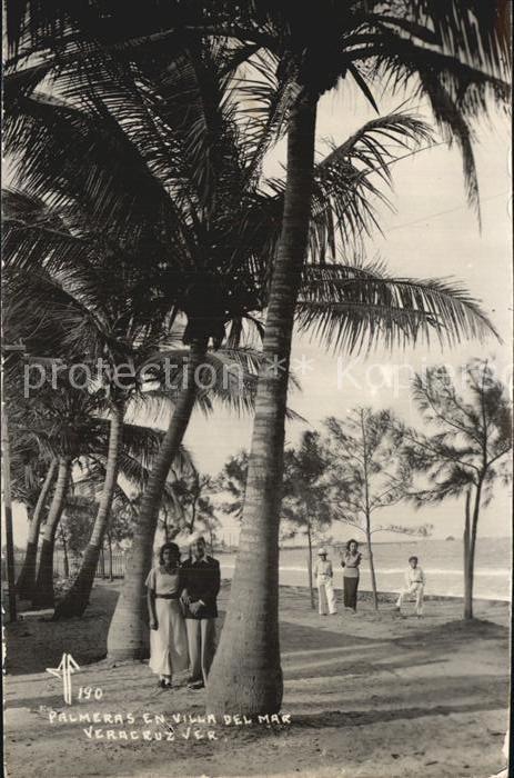 Veracruz Palmeras en Villa del Mar Kat. Veracruz