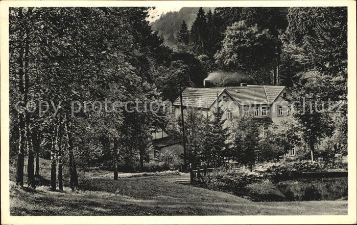 Hohegeiss Harz Hoehenluftkurort Wolfsbachmuehle Kat. Braunlage