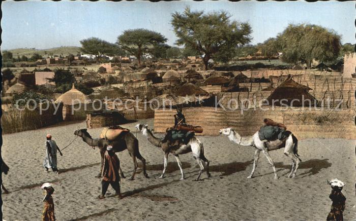 Niger Zinder Kamelkarawane Richtung Markt Kat. Niger