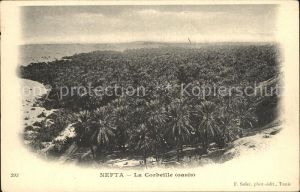 Nefta La Corbeille oasis Kat. Tunesien