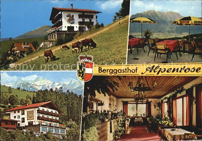 St Koloman Berggasthof Alpenrose Viehweide Kuehe Alpenblick Kat. Oesterreich