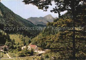 Schwarzau Gebirge Gasthaus zur Singerin Kat. Schwarzau im Gebirge
