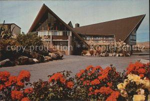 Neuseeland Fiorland Motor Lodge Kat. Neuseeland