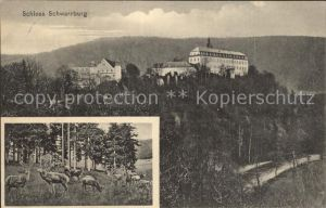 Schwarzburg Thueringer Wald Schloss Hirsche Kat. Schwarzburg