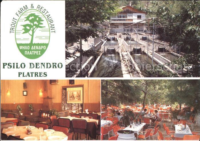 Zypern Cyprus Restaurant Psilo Dendro Platres  Kat. Zypern