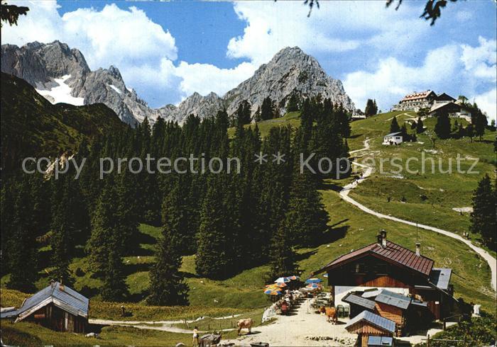 Garmisch Partenkirchen Am Kreuzeck Kreuzalm Kreuzeckhaus gegen Zugspitze und Waxensteine Kat. Garmisch Partenkirchen