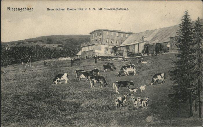 Neue Schlesische-Baude Pferdekopfsteine Riesengebirge *