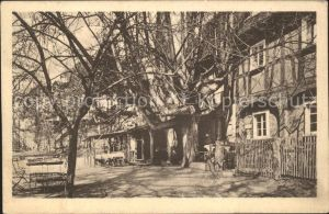 Hirschfelde Zittau Forsthaus Burg Rohnau Neisstal /  /