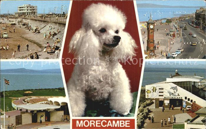 Morecambe Lancashire Sands Leisure Center Promenade Marineland Kat. City of Lancaster