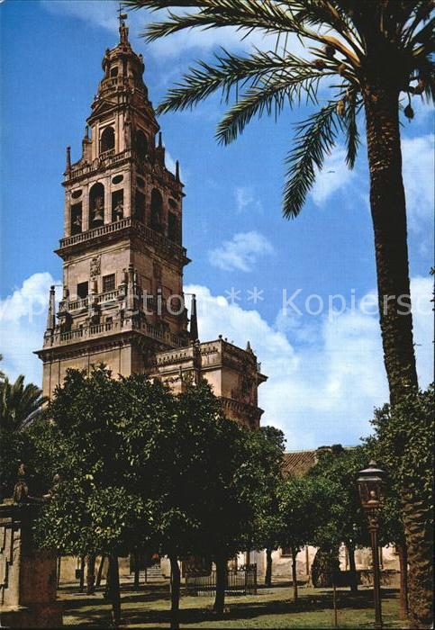 Cordoba Andalucia Catedral de Cordoba Kat. Cordoba
