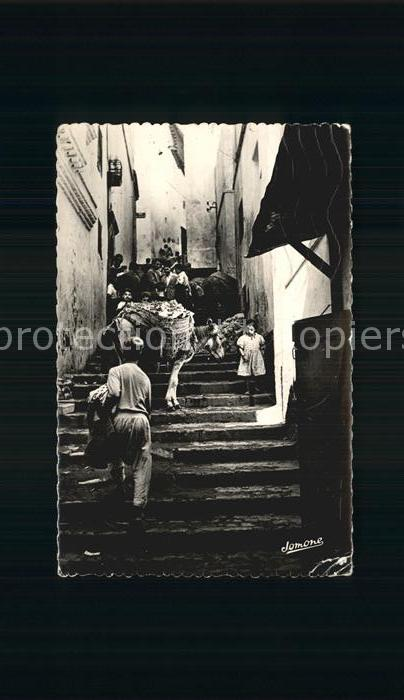 Alger Algerien Scene dans la Casbah